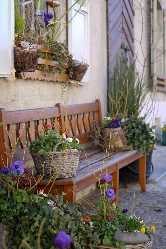 Banc en bois avec des paniers en osier contenant des plantes et des fleurs printanières